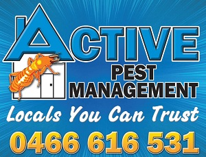Active Pest Perth Services